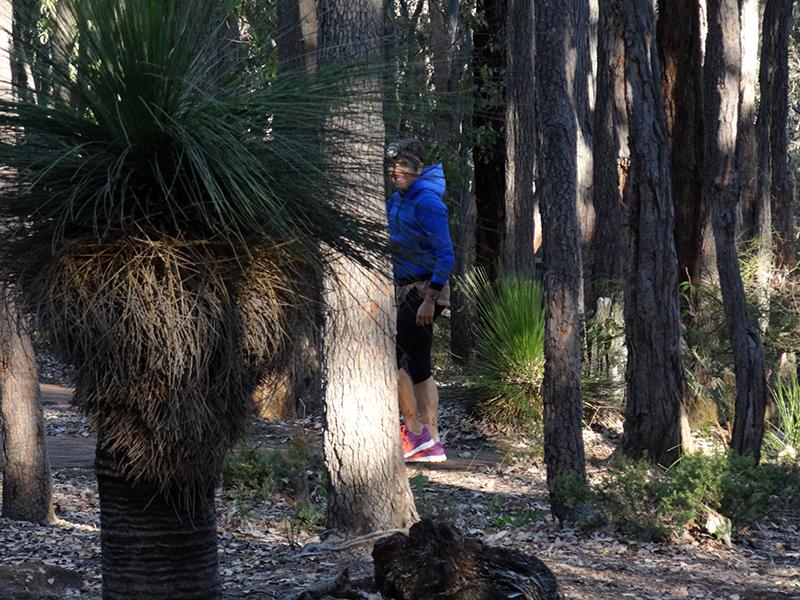 Campeggio a Perth Hills Visitors Centre